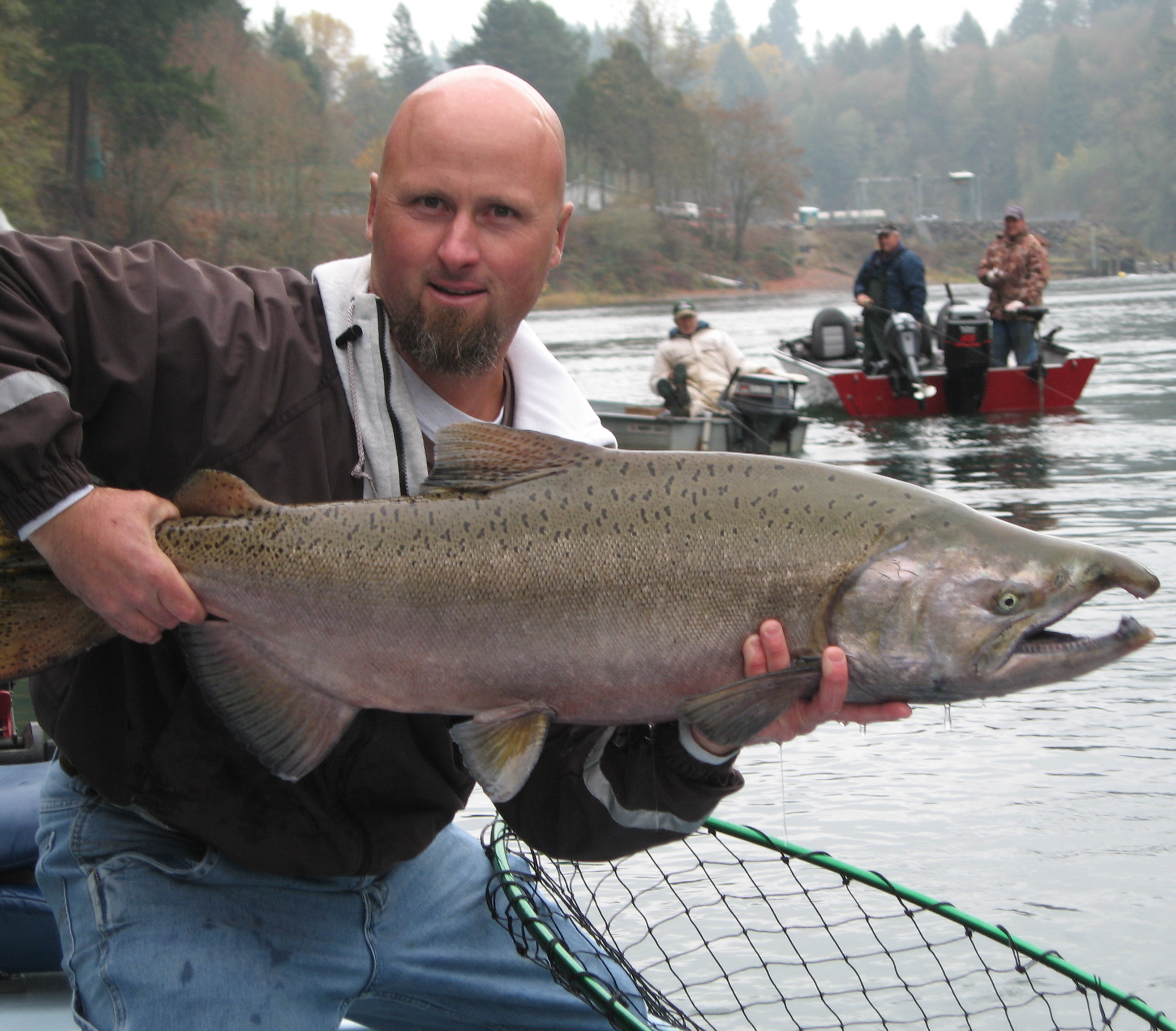 North fork lewis river fishing sts guide service for Salmon fishing washington rivers