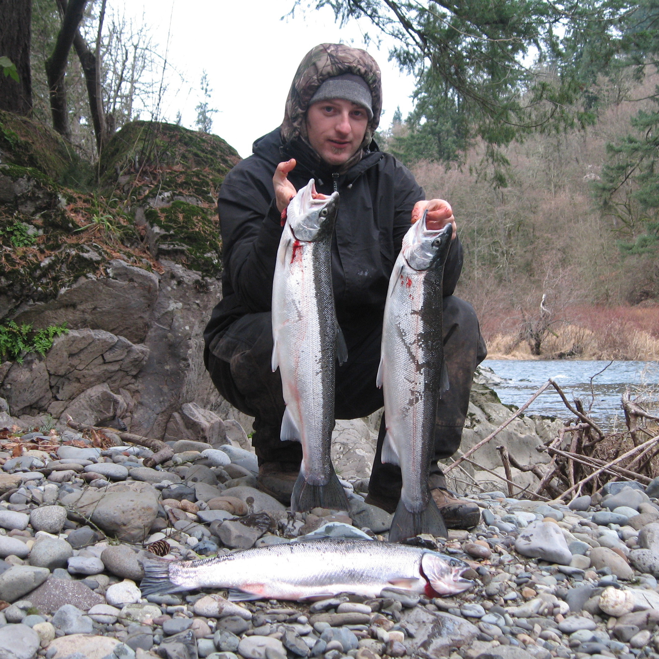 lewis river fishing report