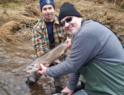 Jan. 24 2016 Steelhead Fishing Report