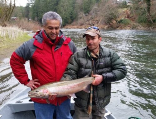 Feb. 12 2016 Steelhead Fishing Report