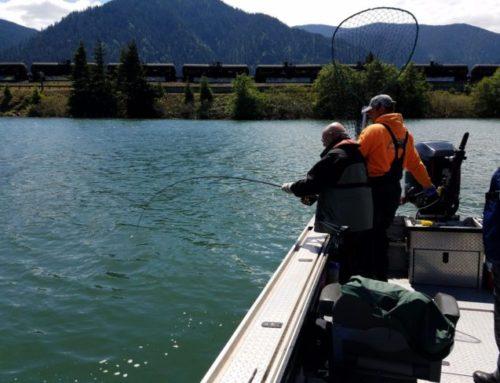 Columbia River Spring Chinook Salmon Fishing set 2016