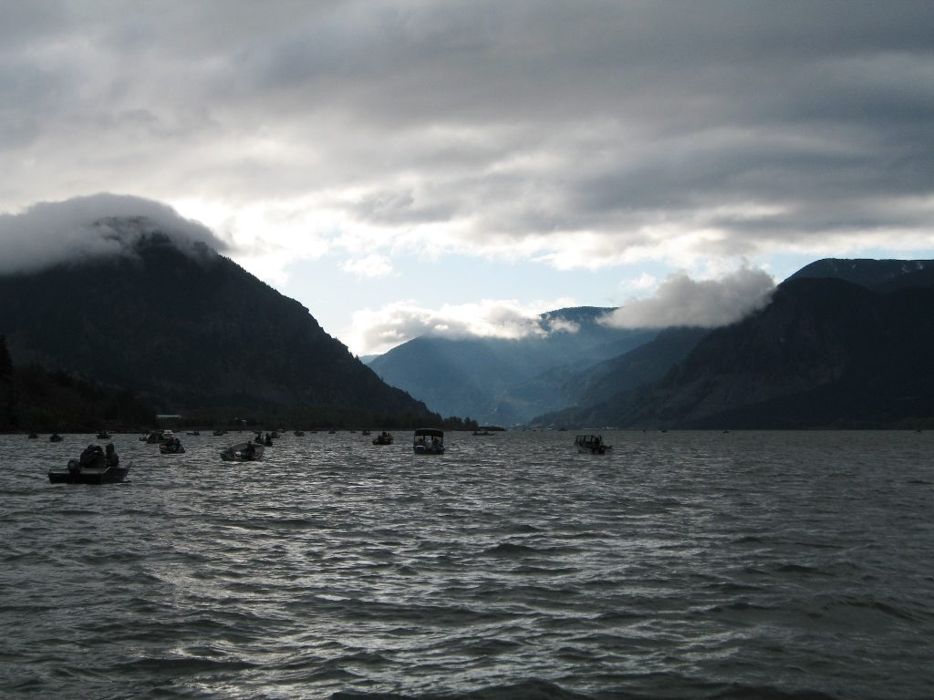 Guided Columbia River Fishing Trips